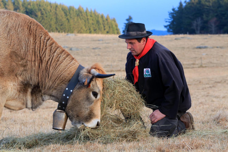 Agriculteur Fin Gras du Mézenc